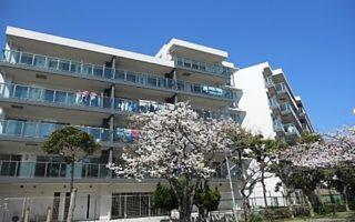 Beatiful View apartment