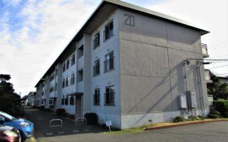 Renovated Apartment in Maborikaigan!!