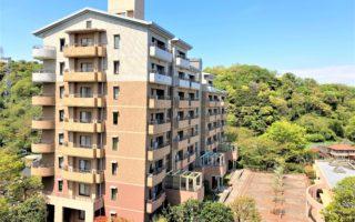 the Apartment in Quiet & Pleasant Area!!