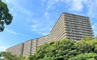Duplex Apartment on the Top Floor